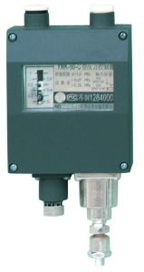 Factory Sales Pressure Controller