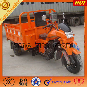 150cc Simple Shed Cargo Pioneer Tricycle for Sale pictures & photos