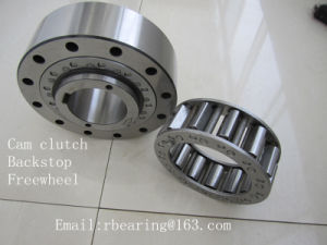 Sprag Type Freewheel Cam Overrunning Backstop Clutch Rsci50