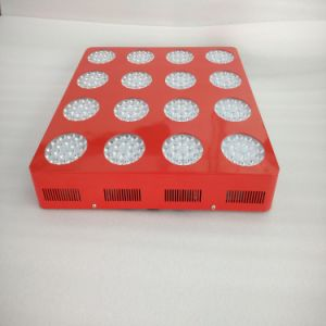 Ce RoHS 1000W 16 Band LED Grow Lights for Garden Greenhouse pictures & photos