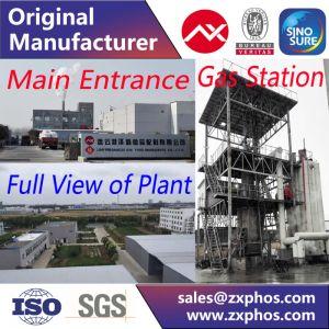 SHMP - Sodium Hexametaphosphate - Technical Grade - 68% Content SHMP - Industrial Grade pictures & photos