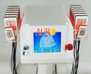 Vertical Lipo Laser Body Weight Loss Equipment for Salon Use pictures & photos