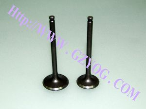Yog Motorcycle Engine Parts Valves Zy 125 pictures & photos