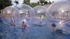 Kid′s Inflatalbe Water Ball for Children Park (TK-032) pictures & photos