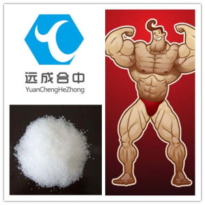 Bodybuilding Build Muscle to Increase Image Quality Testosterone Sustanon 250 pictures & photos