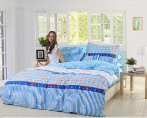 100% Cotton Comfortable Home Bedding Sets pictures & photos