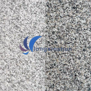 G623 Natural Customized White/Grey Granite Floor pictures & photos