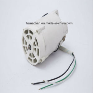 Electric Motor for Household Snow Blower