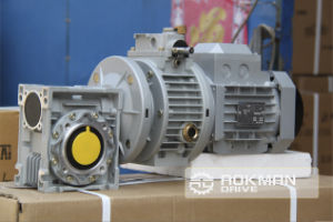 Input Flange Nrv Series Worm Gear Box pictures & photos