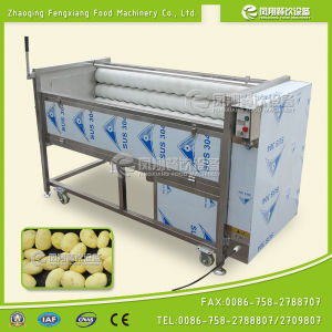 Ce Approval Mstp-1000 Vegetable Carrot Peeler Peeling Washing Machine pictures & photos