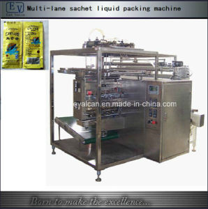 Automatic Multi-Rows Season Paste Packing Machine pictures & photos