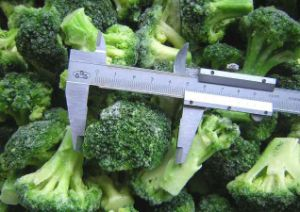 IQF Frozen Vegetable Food Broccolis pictures & photos