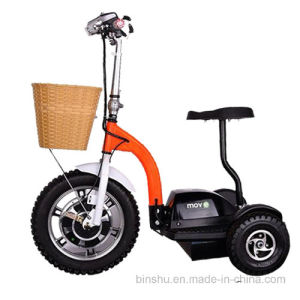 3 Wheel Electric Mobility E-Scooter with Brushless Motor pictures & photos