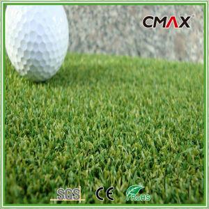 Sport Artificial Turf Golf Outdoor Putting Green Grass pictures & photos