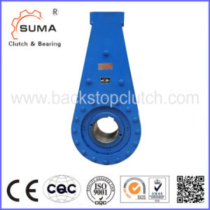 Overrunning Clutch/Backstop/One Way Sprag Clutch for Industrial Equipments (NJ65 - NJ450) pictures & photos