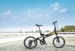 20 Inch Aluminum Alloy City Bicycle, Steel Bicycle