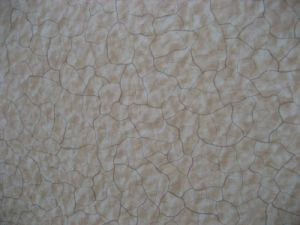 High Pressure Laminate Produce by Wuya (1300*2800) -9 pictures & photos