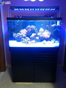 Full Spectrum 180W LED Light for Marine Aquarium Trimmer Dimmer pictures & photos