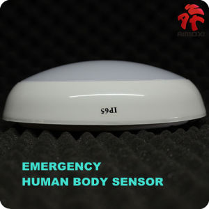 LED Emergency Ceiling Light 2W 800lm 330mm*100mm pictures & photos