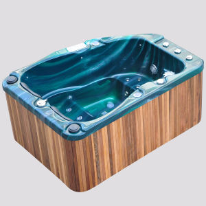 Golden Coast SPA with Jets LED Lights TV Speaker pictures & photos