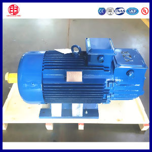 110V Three Phase Crane Electric Induction Motor From China pictures & photos