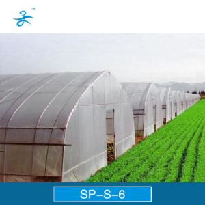 Sp-S-6 Plastic Film Greenhouse for Vegetables and Flowers