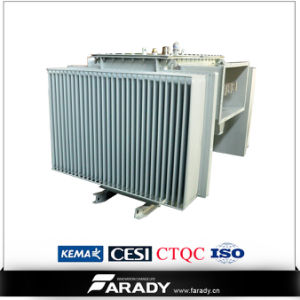 11kv 800kVA Three Phase Power Transformer pictures & photos