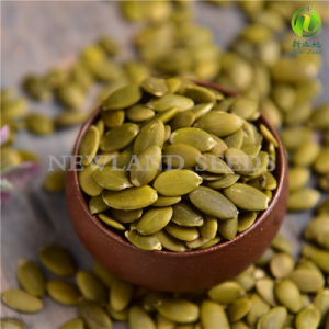 Chinese Pumpkin Seeds Kernels with Organic and Pure pictures & photos