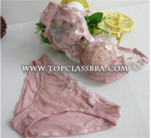 Hot Sales Transparent Bra and Panty for Sexy Lady (FYB1015) pictures & photos