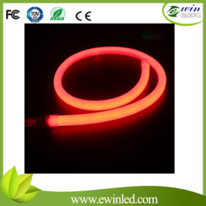 Round LED Neon Flex with 120 PCS SMD LEDs (19mm) pictures & photos