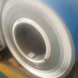 300 Series Stainless Steel Sheet - 09 with High Quality pictures & photos