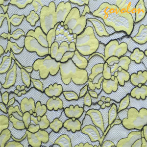 High Class Polyester Embroidery Lace Fabric pictures & photos