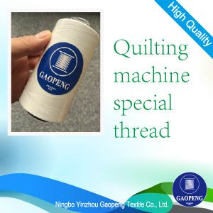 Supper Quilting Machine Sewing Button Tent PP Thread for Clothing/Garment/Shoes/Bag/Case pictures & photos