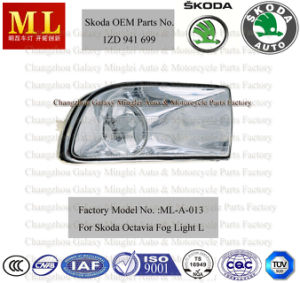 Good Auto Fog Lamp for Skoda Octavia From 2004 (2ND generation) with OEM Parts No. 1zd 941 699 pictures & photos