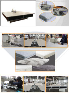 High Quality Mattress Sewing Machine for Mattress Zipper Machine pictures & photos