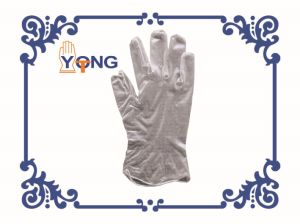 Clear Vinyl Gloves with Powder Free