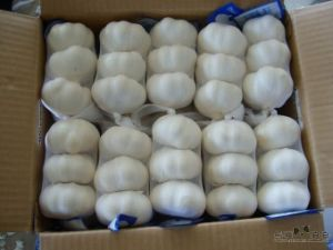 2015 New Crop Chinese Fresh Garlic pictures & photos