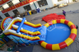 Inflatable Slide with Water Pool (CHSL501) pictures & photos