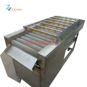 Commercial Vegetable Washer Made In China pictures & photos