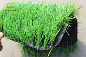 Two Spine Artificial Grass for Football Field pictures & photos