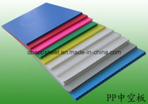 PP/PE Flute Board pictures & photos