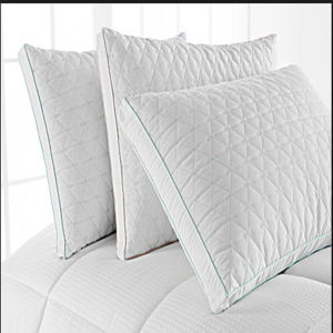 Water-Proof Pillow Protector (DPFP8018) pictures & photos