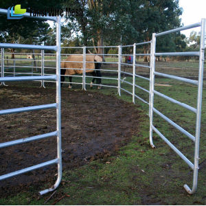 Heavy Duty Galvanized Welded Steel Sheep Corral Panels pictures & photos