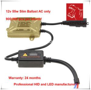 12V 55W Quick Start HID Xenon Ballast pictures & photos