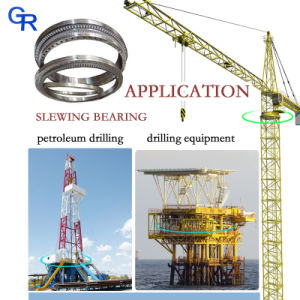Crane Construction Machine Nongear Rotating Bearing for Doosan pictures & photos