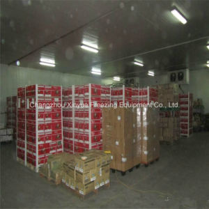 Modular Cold Storage Room Since 1982 for Fruits and Vegetables pictures & photos