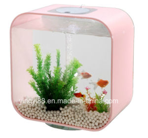 Sleek Colorful Acrylic Aquarium with LED Light pictures & photos