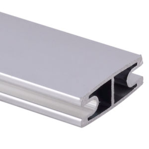 Aluminium/Aluminum Extrusion by Silver Anodizied with ISO9001 Certified pictures & photos