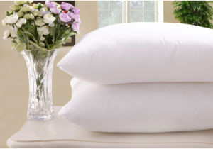 White Goose Down Pillow for Hotel pictures & photos