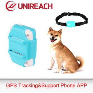 GPS Tracker for Pet Support Waterproof 100% (MT66)